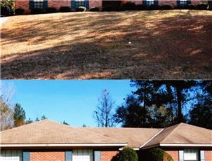 Evans Realty Duplexes apartment in Auburn, AL